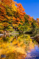 Betsie River Technicolor