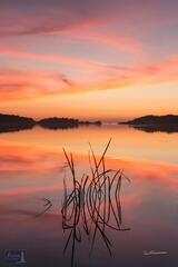 Arcadia Lake Sunset