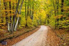 Autumn Adventuring