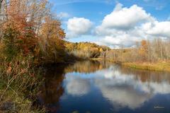 Betsie River Fall