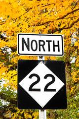 M22 North - Autumn