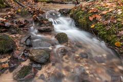 Misty Acres Creek