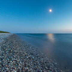 Moonshine Shoreline