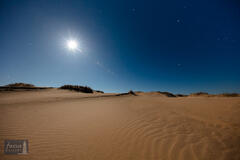 Leelanau County, Michigan, NPS, SLBE, Sleeping Bear Dunes Natioanl Lakeshore, Sleeping Bear Point, Sleeping Bear Point Trail...