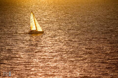 Sailing into the Sunset - Chicago to Mackinac Race