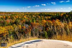Scenic Bluff View
