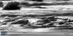 Stormy Laker (Black and White)