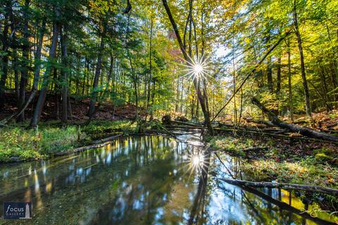 Creek and Starburst