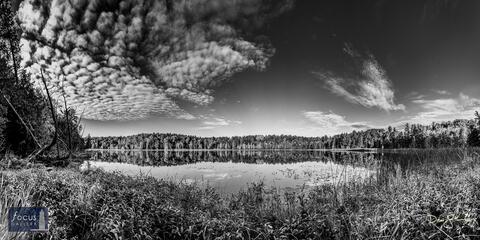 Lower Woodcock Lake Autumn Vista (Black and White)