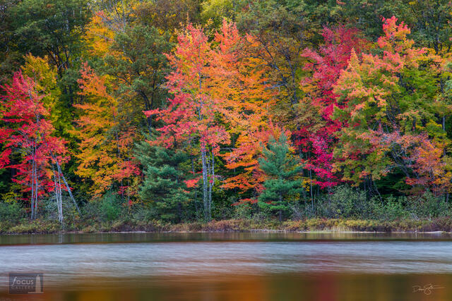 Fall colors and the shore of Ransom Lake.