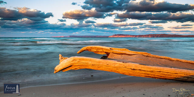 Driftwood Waves at Platte Point