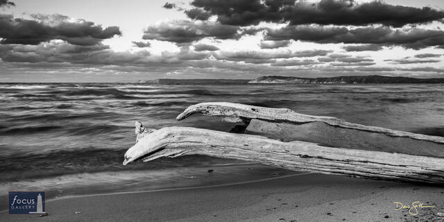 Driftwood Waves at Platte Point (B+W)