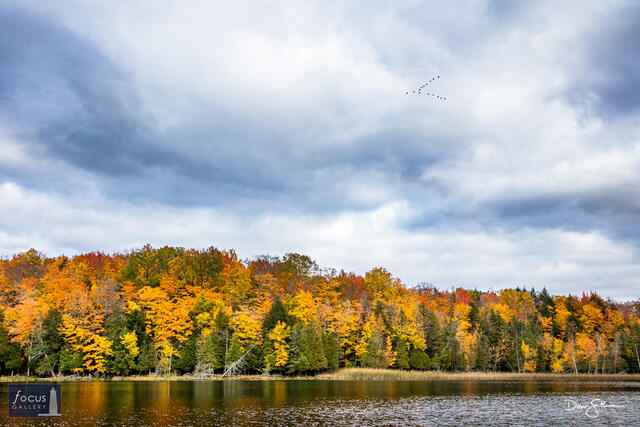 Fall Flyby - Heading South