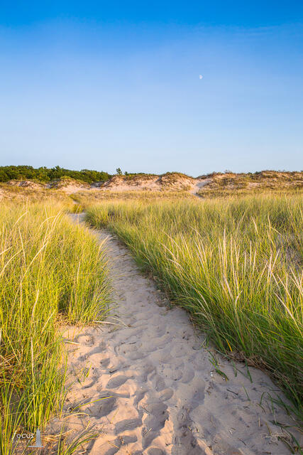 Sandy trail through dunes at Platte River Point in the Sleeping Bear Dunes with blue sky overhead.