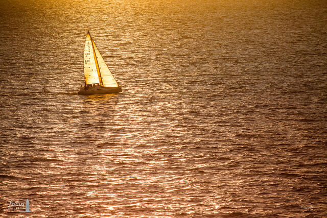 Backlit sailboat participating in the Chicago to Mackinac race on Lake Michigan at sunset.