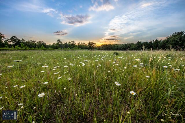 Benzie, Benzie County, GTRLC, Grand Traverse Regional Land Conservancy, Honor, Michigan, Platte River Park