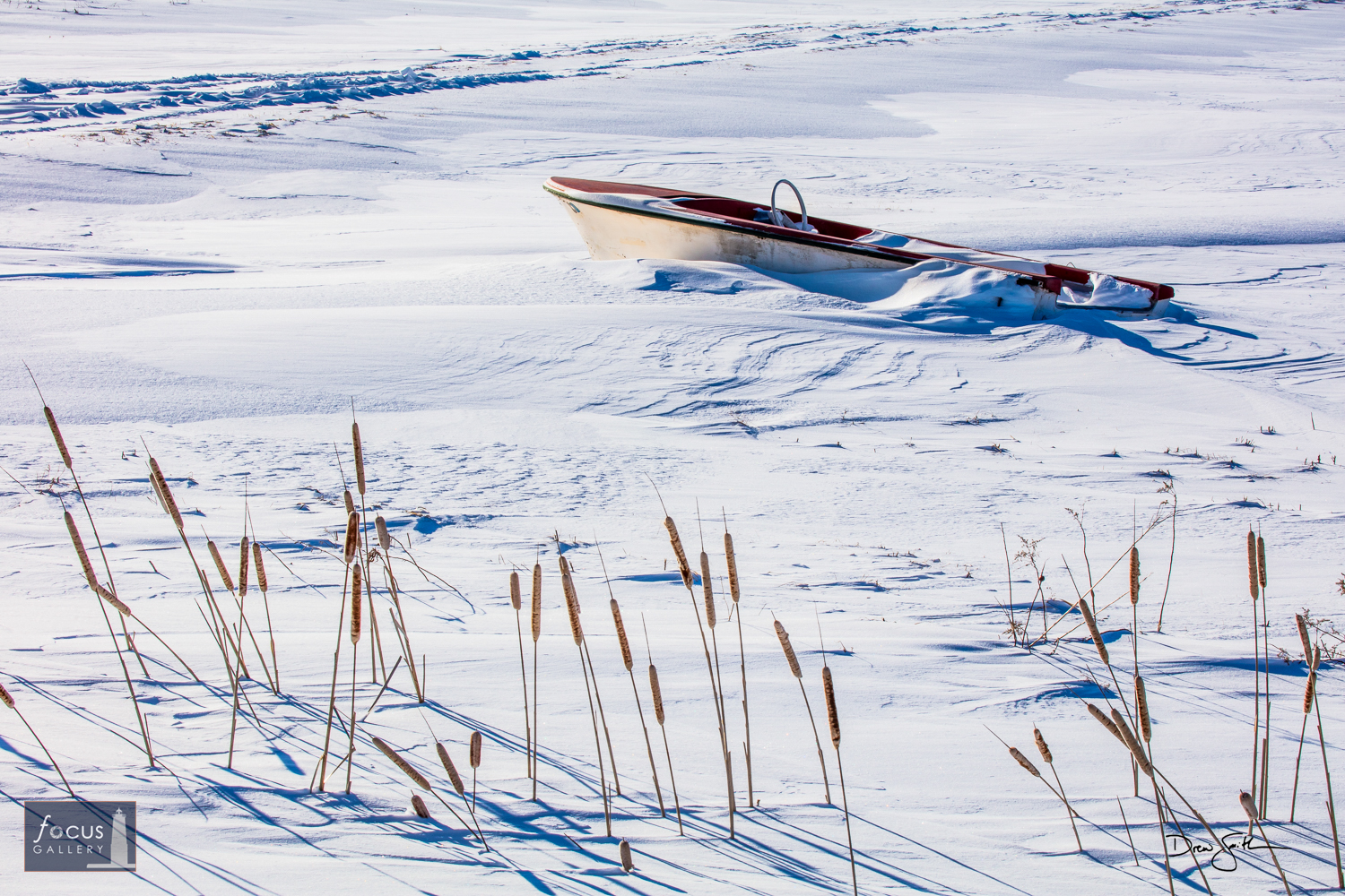 Photo © Drew Smith While on a winter birding trip to the Eastern Upper Peninsula I spent time around Rudyard and Pickford, checking...