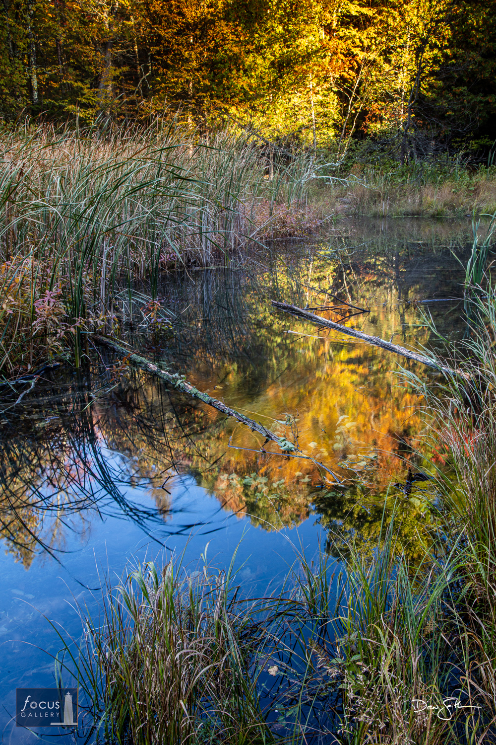 Photo © Drew Smith Fall colors lit by early morning sun reflect on calm water along the shoreline of Lower Woodcock Lake.  This...