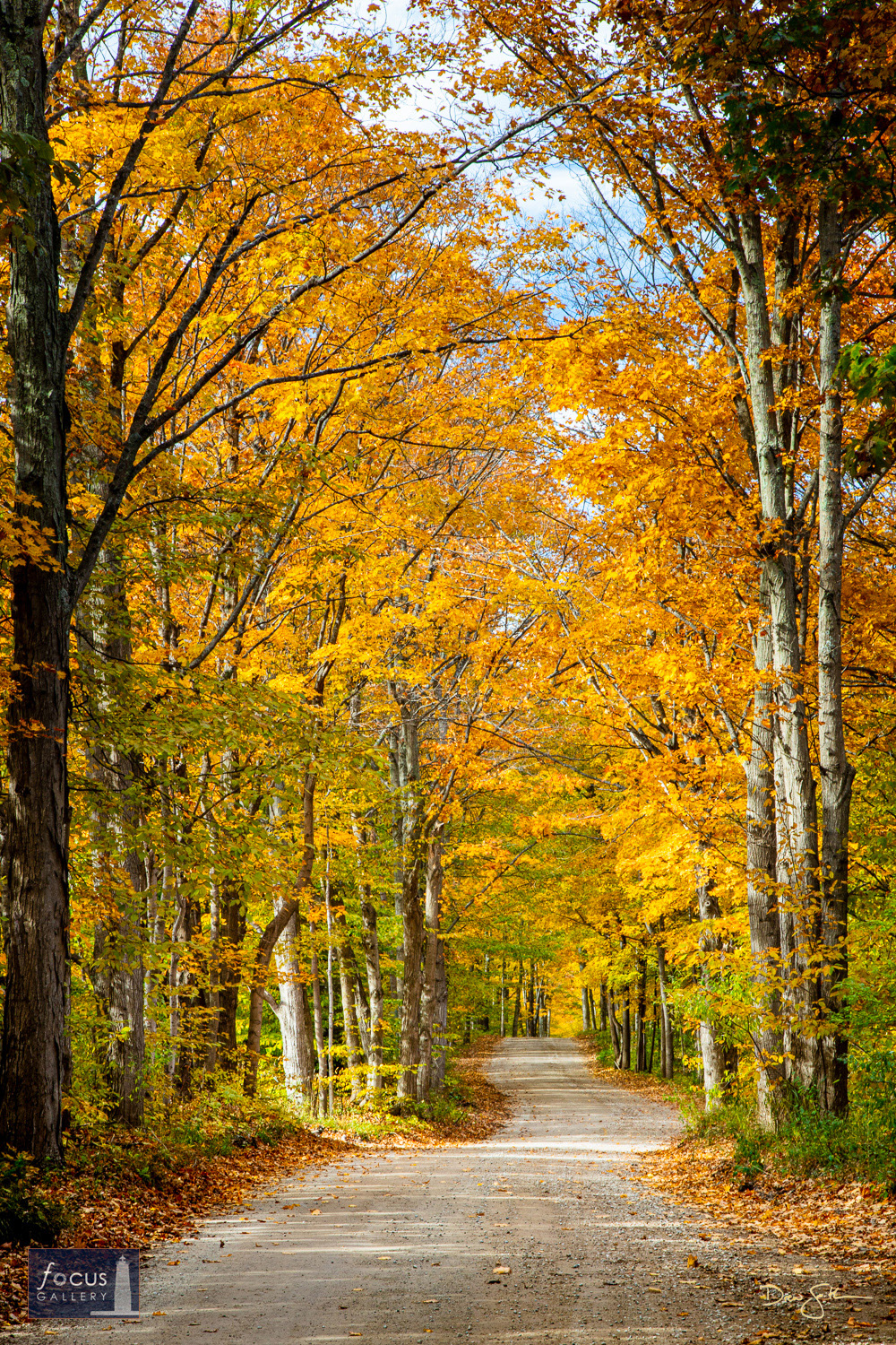 Photo © Drew Smith This image was taken on Voice Road, which leads to North Bar Lake in the Sleeping Bear Dunes, on a beautiful...