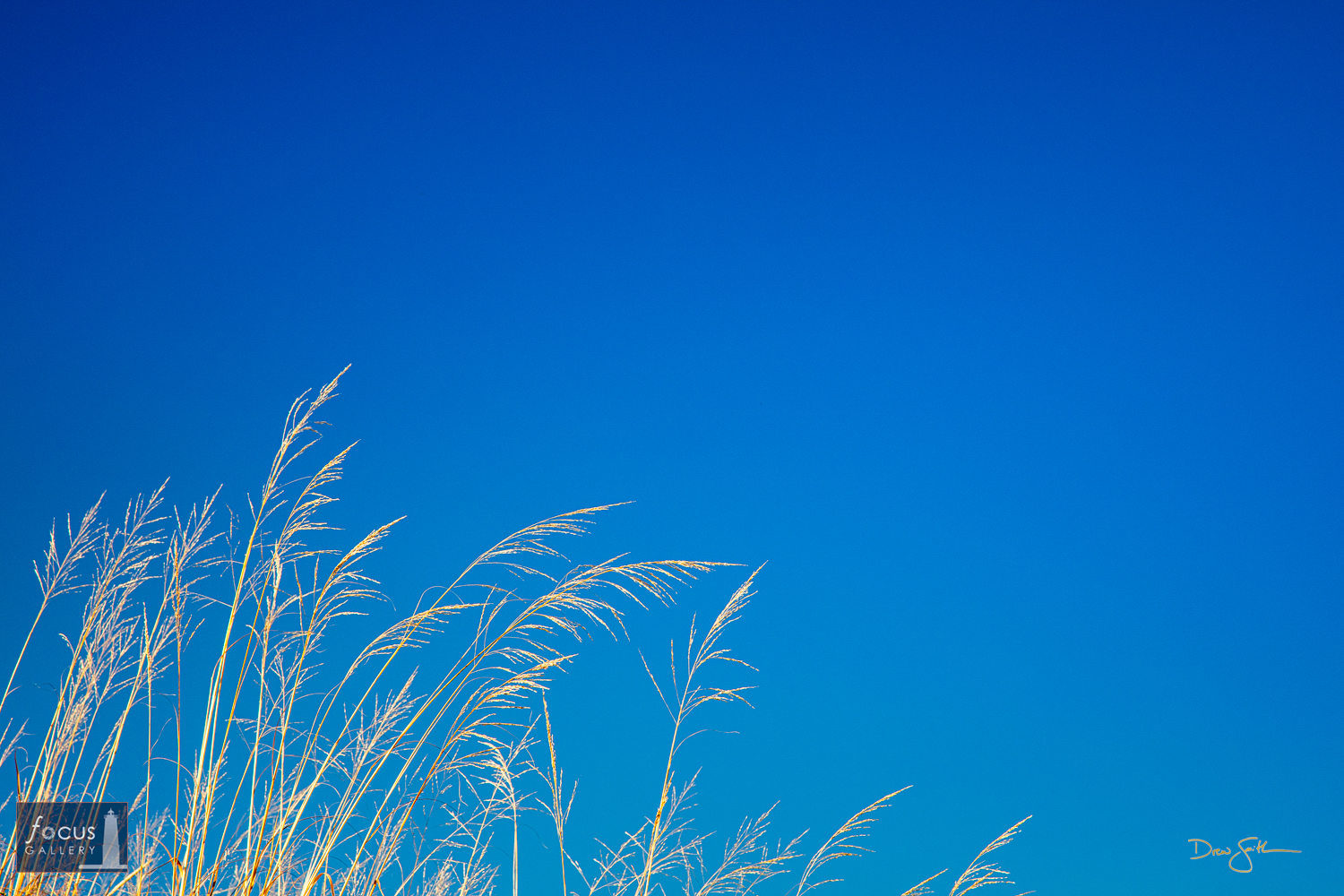 Photo © Drew Smith Beach grass and blue sky mark a perfect day in the dunes.  Taken along the Lake Michigan shoreline at Otter...