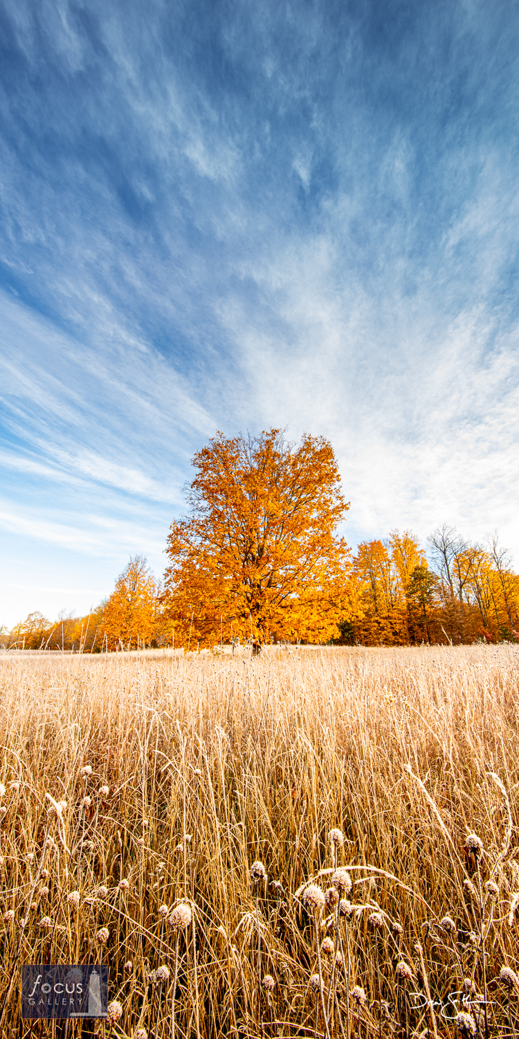 Photo © Drew Smith While on the road to the Manistee River High Banks Rollaway for sunrise on a fall morning, I was mesmerized...