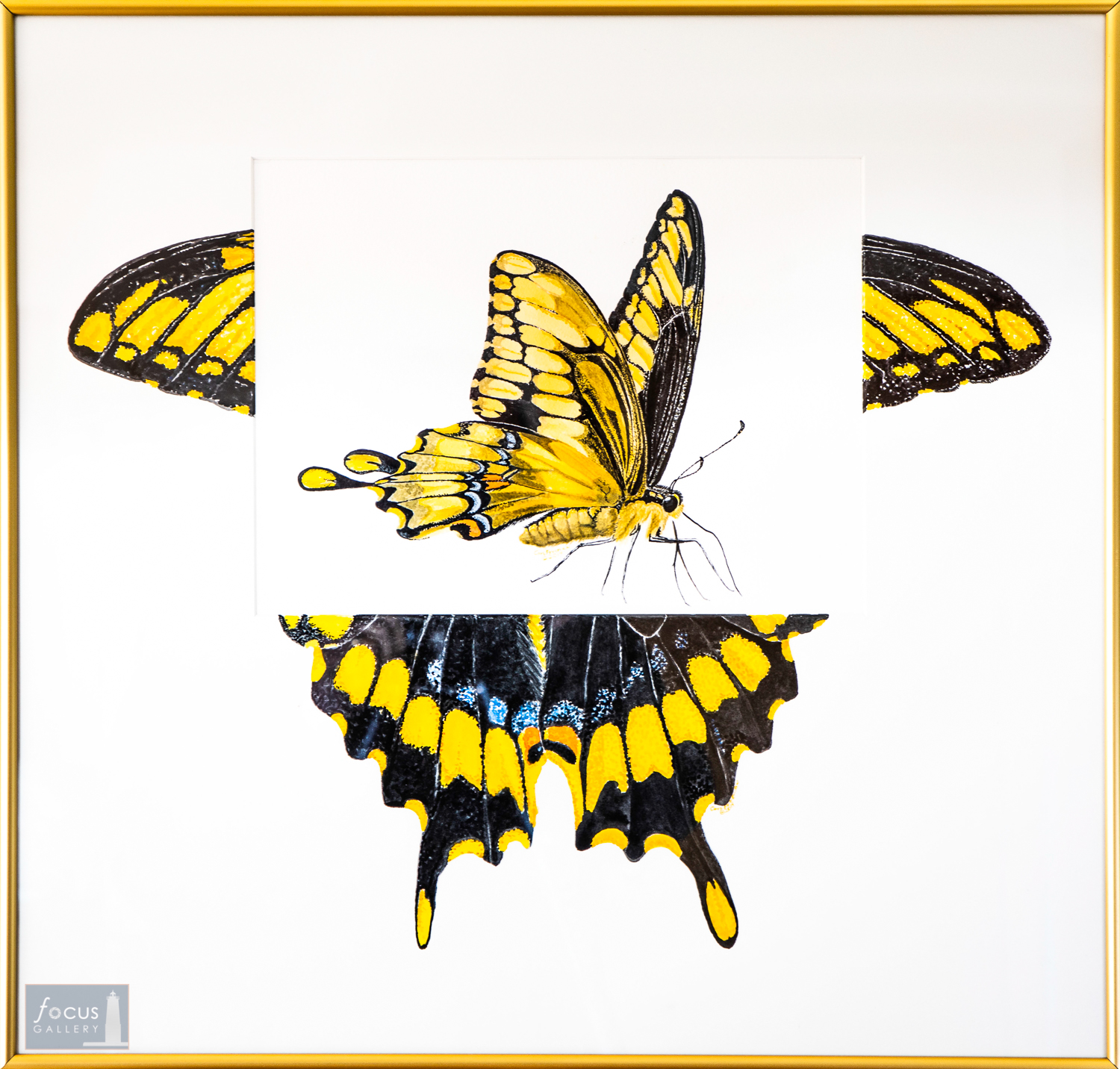Original watercolor painting of a Swallowtail butterfly with embellished mat.