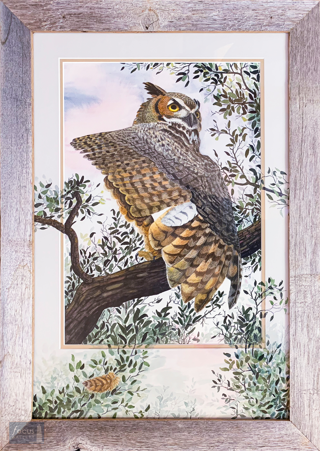 Original watercolor painting ofa Great Horned Owl bird stretching its wing with painting continued onto mat board.