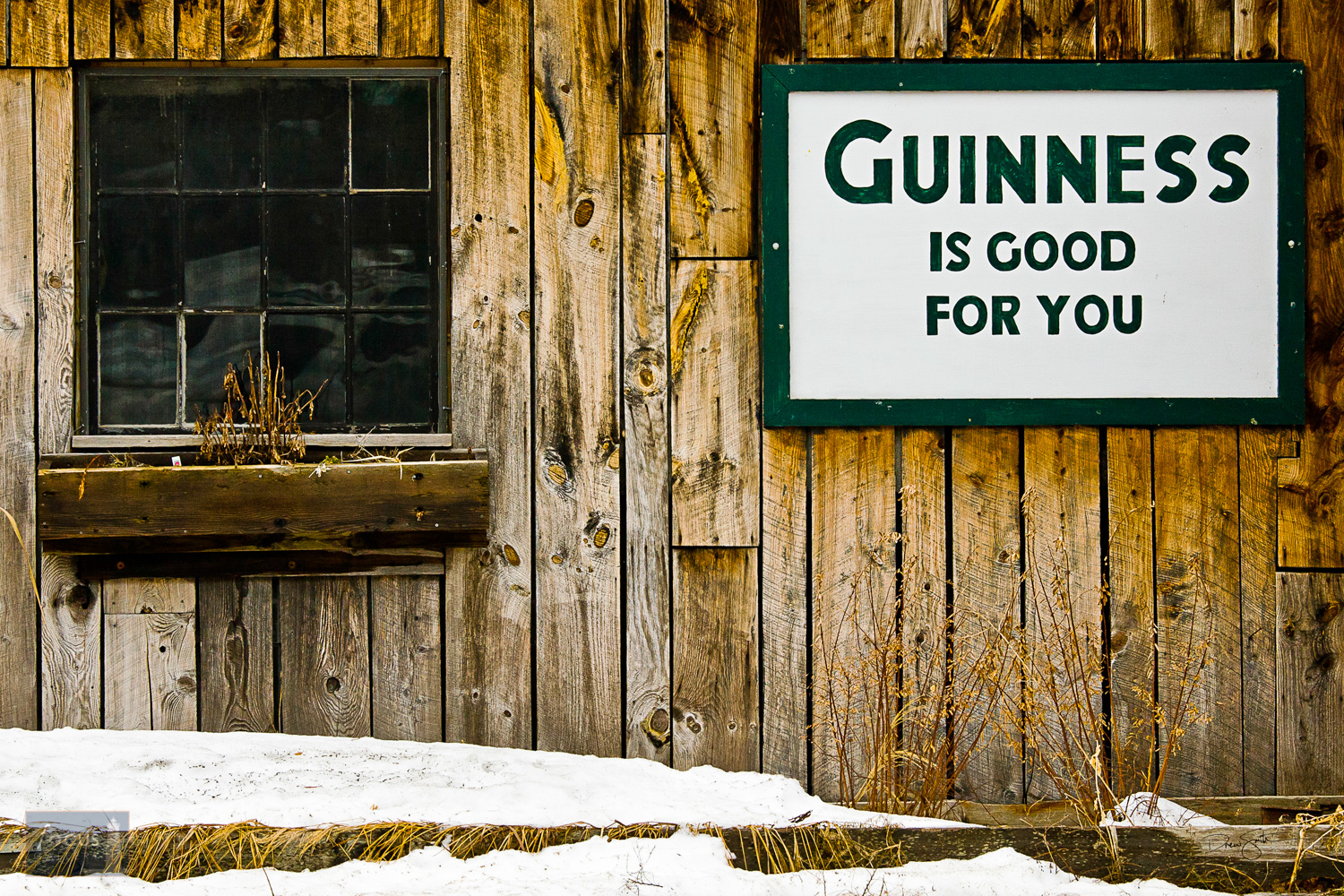 Guinness is good for you beer sign on the side of the Cabbage Shed bar in Elberta.