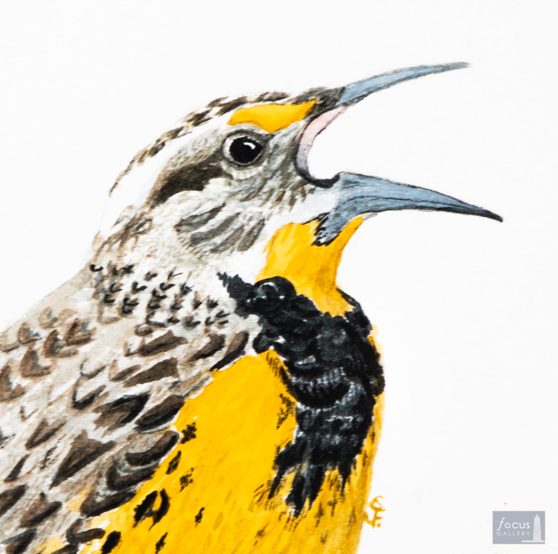 Original watercolor painting close-up of an Eastern Meadowlark bird singing.