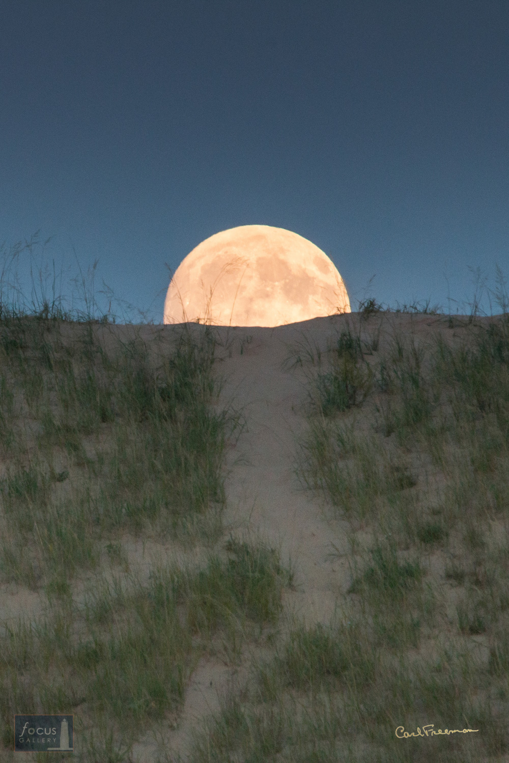 Photo © Carl Freeman Full moon rise, looks like one could walk down the path and jump over the moon.