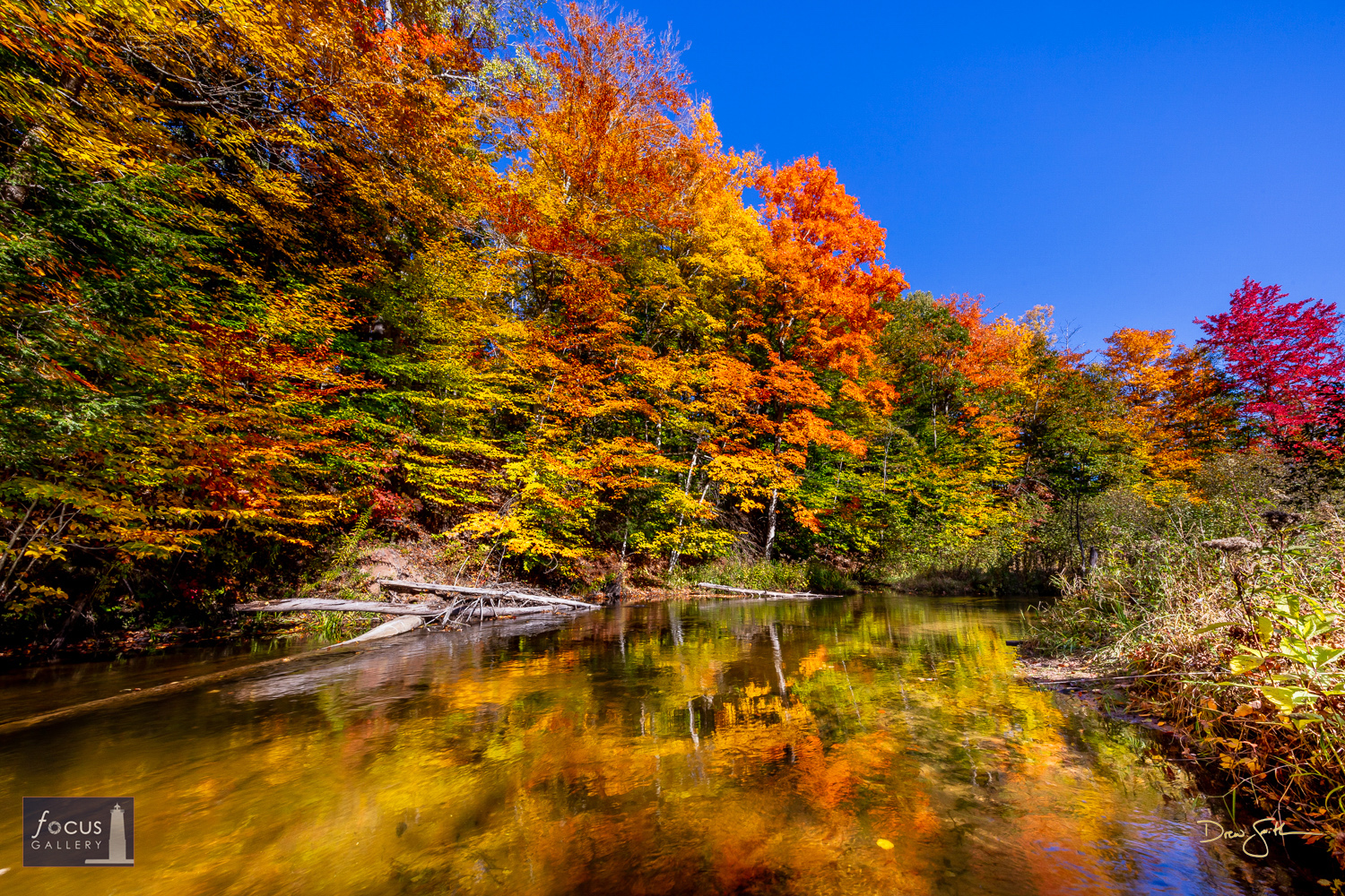 Photo © Drew Smith Peak autumn color along the shores of the Betsie River on a gorgeous fall day.