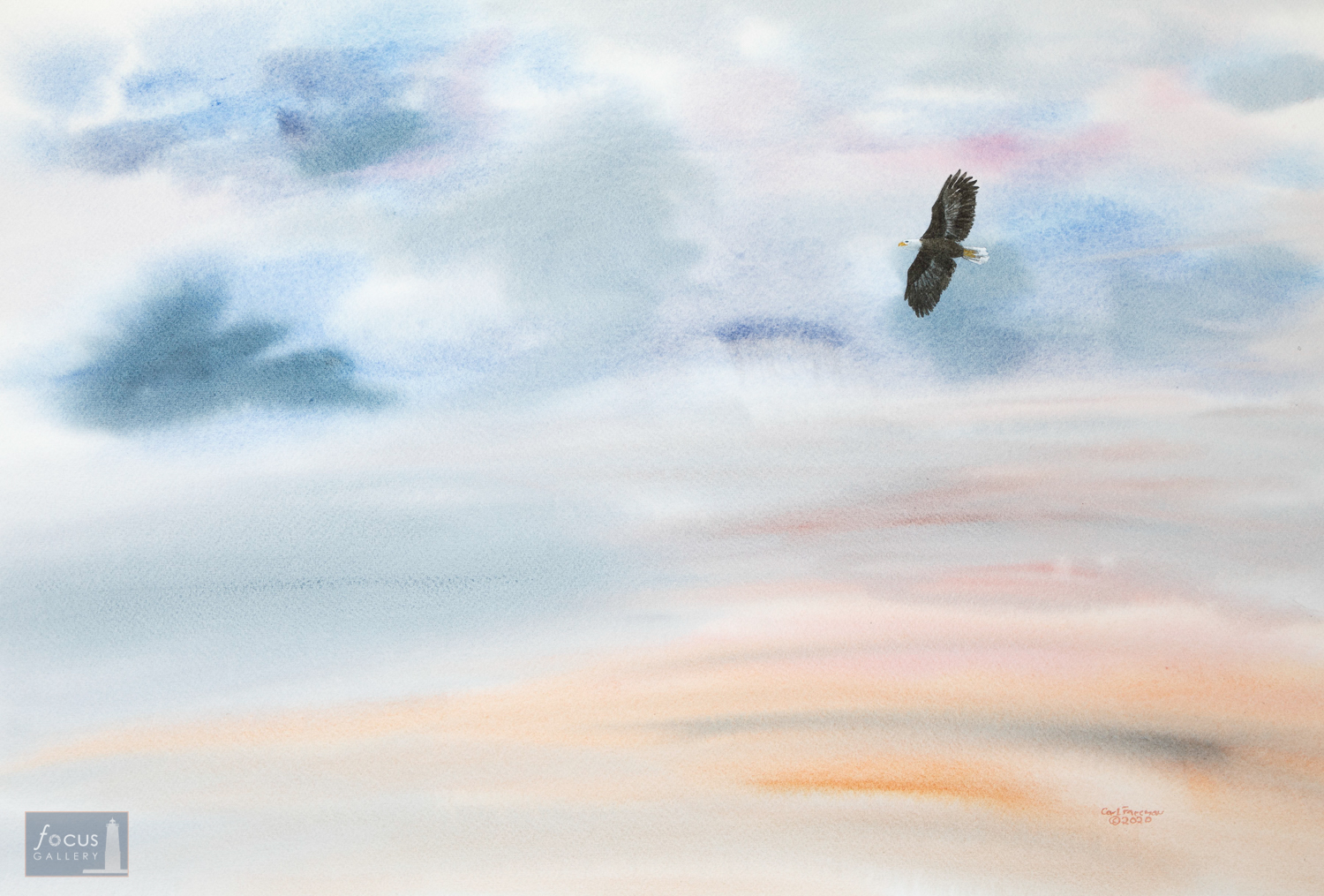 Original Watercolor painting of a Bald Eagle flying in colorful sunset clouds.