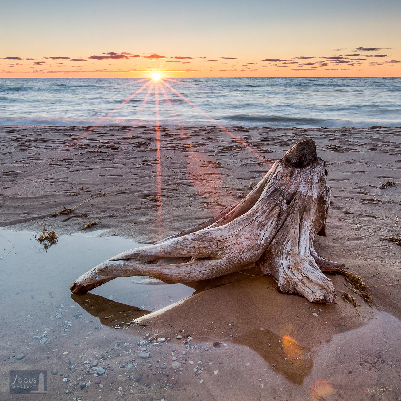 Driftwood log on the Lake Michigan beach at sunset.