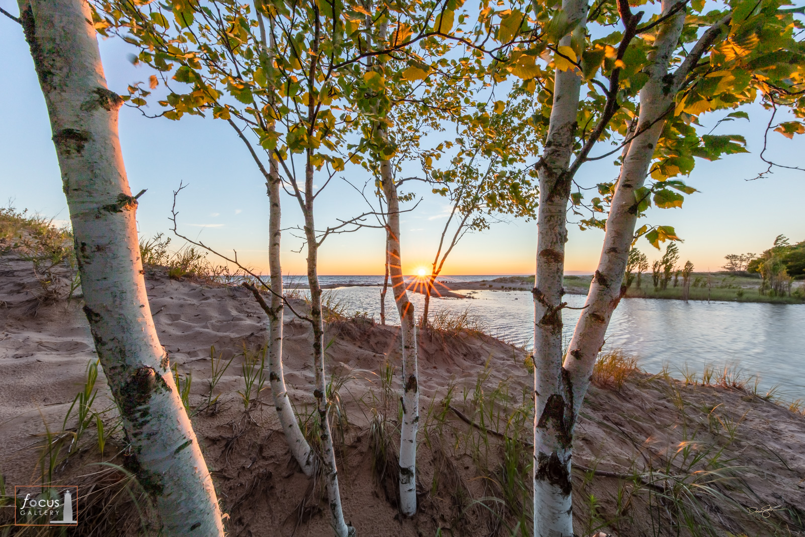 Sunset on a creek and Lake Michigan through birch trees.