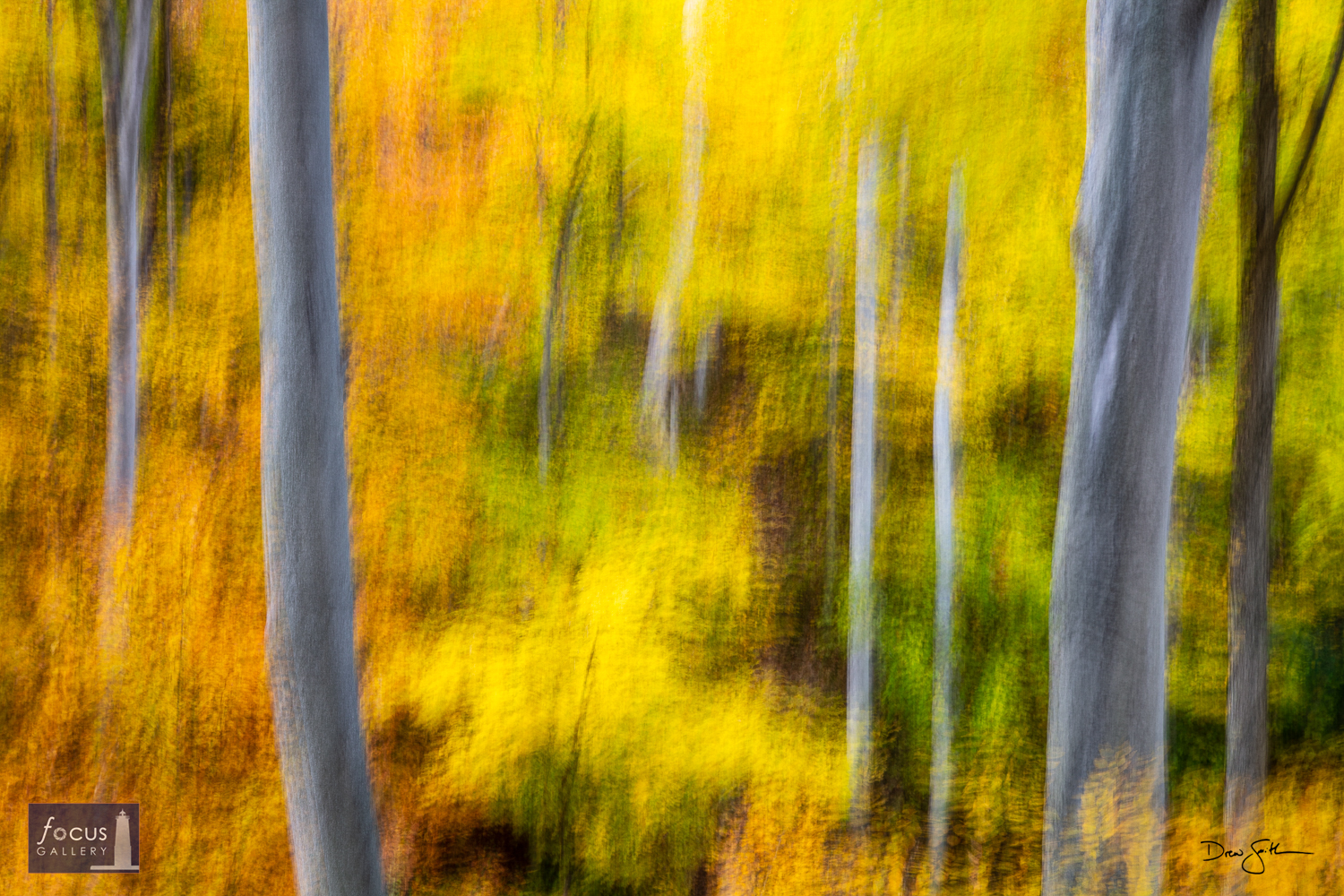 Photo © Drew Smith Impression of the north woods on an autumn day at the Whaleback Natural Area.  This image was made by using...