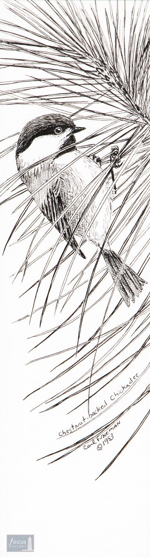 Carl Freeman, Pen and Ink, Original